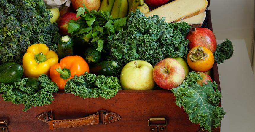 Was darf überhaupt in den Kompostbehälter